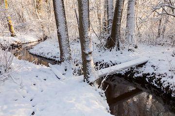 Snowy stream valley sur Karla Leeftink
