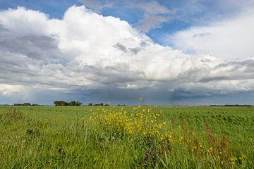 Hollandse wolkenlucht von Sjoerd van der Wal