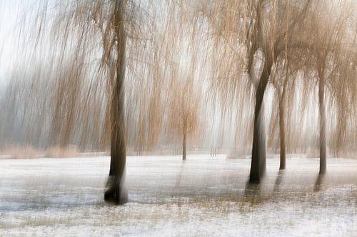 Schilderachtig landschap van Shadia Bellafkih