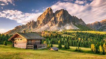 Alpenhut op een alpenweide in de Alpen / Dolomieten in Italië van Fine Art Fotografie