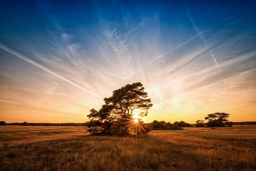 Zonsondergang Hoge Veluwe van Arjen Dijk