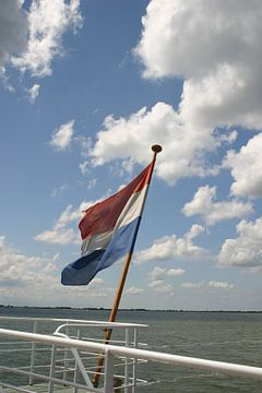 Nederlandsevlag van EnWout