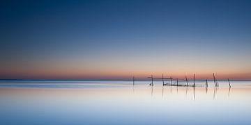 summerlight at sea van Aline van Weert