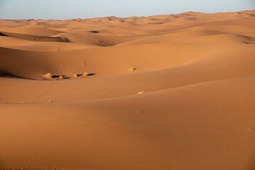 Sahara, Erg Chigaga, Marokko van Jan Fritz