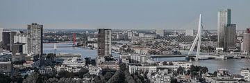 Skyline Rotterdam (r/b) van John Ouwens