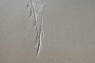 Sporen van stromend water in het zand van Nicolette Vermeulen