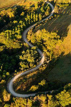 Het glooiende Toscaanse landschap