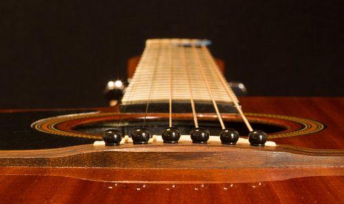 Beautiful guitar van