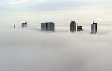 Mistige maandag | Rotterdam in de mist van
