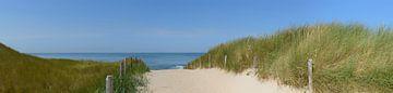 Pfad durch die Dünen, der zum Strand führt von Sjoerd van der Wal