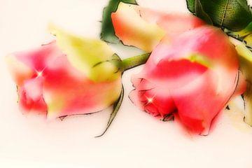 kleine Rosenromance van Dagmar Marina