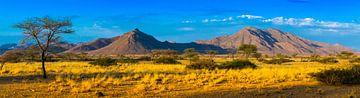 Panorama von den Hügeln von Damaraland, Namibia von Rietje Bulthuis