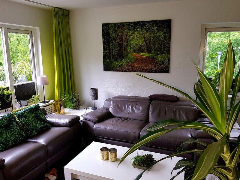 Photo de nos clients: sentier à travers les bois sur Rietje Bulthuis, sur toile