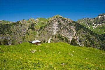 Alm, Allgäu Alps van Walter G. Allgöwer