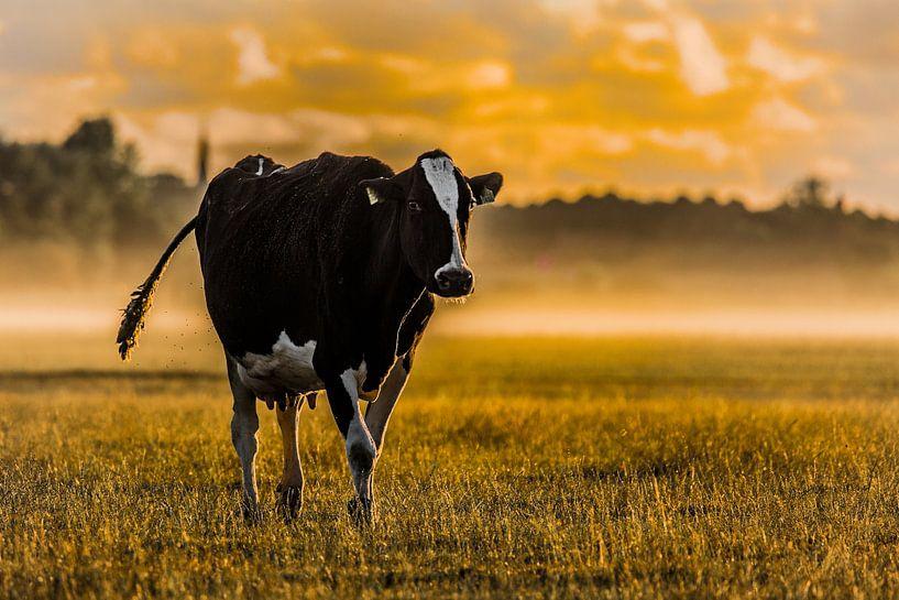 Zonsopkomst op de boerderij #4 van Michiel Leegerstee