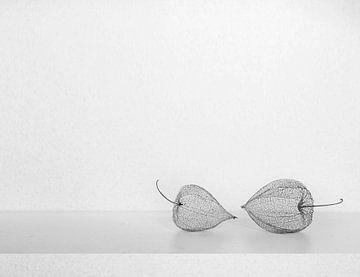 Stilleben mit Laternen von Corinne Welp