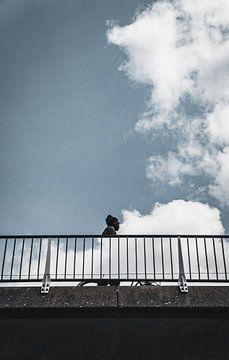 paradoxe de l'homme ambulant sur vedar cvetanovic
