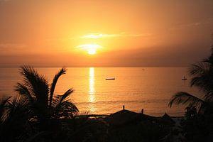 Gouden zonsondergang van Mr Greybeard