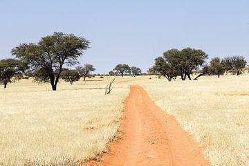 Straße durch die Kalahari, Namibia van Britta Kärcher