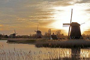 Drie molens aan de Hoornse Vaart te Alkmaar van Ronald Smits