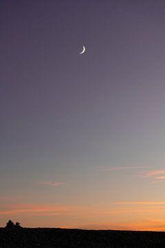 Maan bij zonsondergang van Robin van Steen