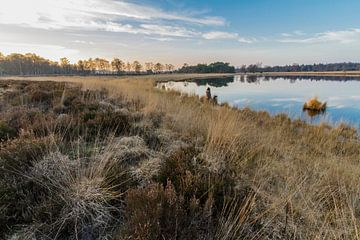 Groote Heide in Achel van Easycopters