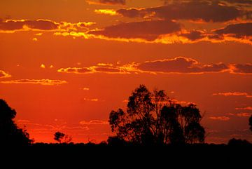 zonsondergang in australie von Frencis van Run