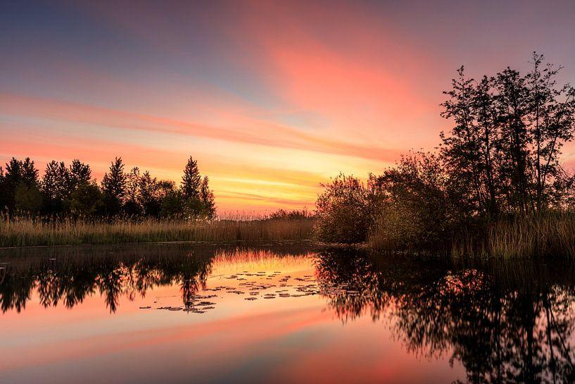 Het ontwaken van een zomerse dag van Nando Harmsen