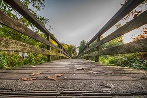 Houten loopbrug