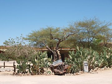 Moose Bakery Namibië van Annie Lausberg-Pater