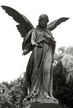 Berlin Angel sur Silva Wischeropp