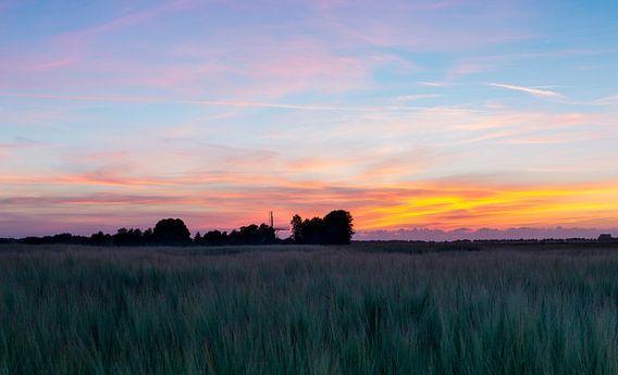 Landschap, molen in weiland bij  zonsondergang