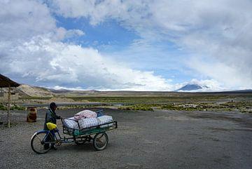 Altiplano Peru von Arjan Blok