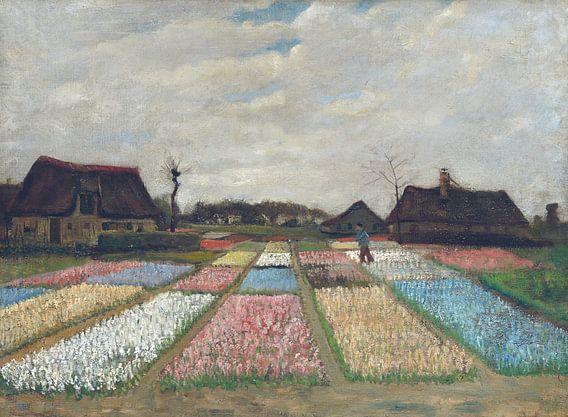 Vincent van Gogh. Bloembedden in Holland