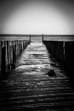 Pfahlköpfe am Strand in Zeeland | Schwarz-Weiß-Foto von Diana van Neck Photography