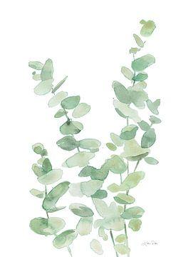 Eucalyptus II, Katrina Pete van Wild Apple