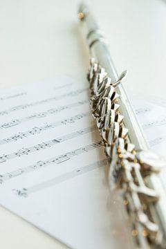 Dwarsfluit en bladmuziek van Gert Hilbink