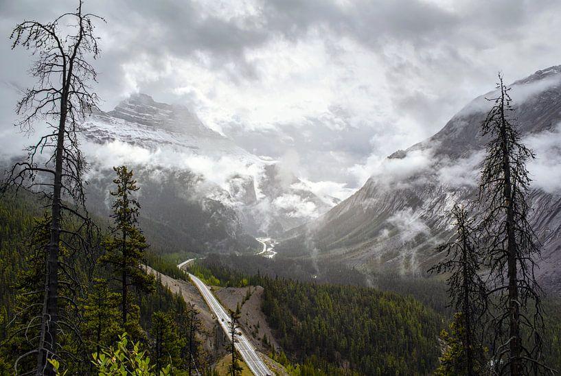 Icefield parkway van Marco Lodder