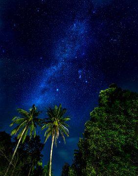 sterrenhemel sur Corrine Ponsen
