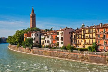 Verona, Italy van