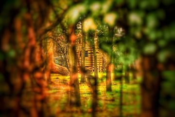 Boswachters huisje verscholen tussen de bomen. van Mariska Brouwenstijn