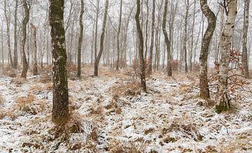 Schneebedeckte Landschaft von Monica de Jong