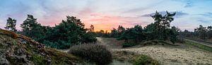 Boshuizerbergen Sunrise van