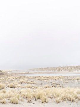 Windige Dünenlandschaft von Laura-anne Grimbergen