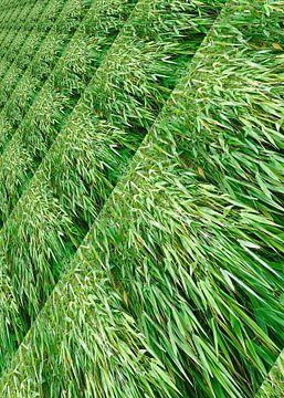 Green-leaved bamboo shrubs van Leopold Brix