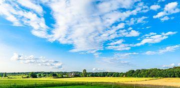 Landschap 5 von Domenique van der Horst