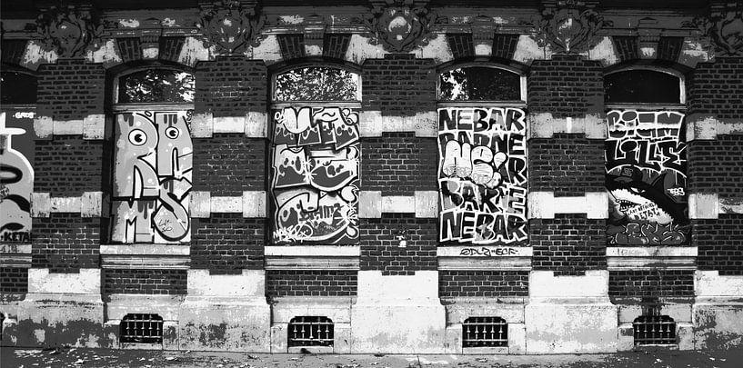 Schreie an der Wand, Lille von Wouter Springer