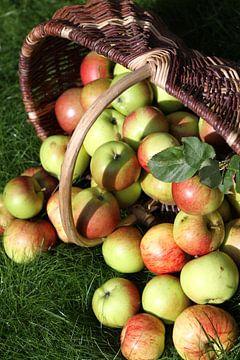 Een mand met rijpe appels van Karina Baumgart