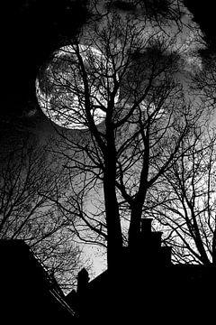 Zie de maan... van Jan van der Knaap