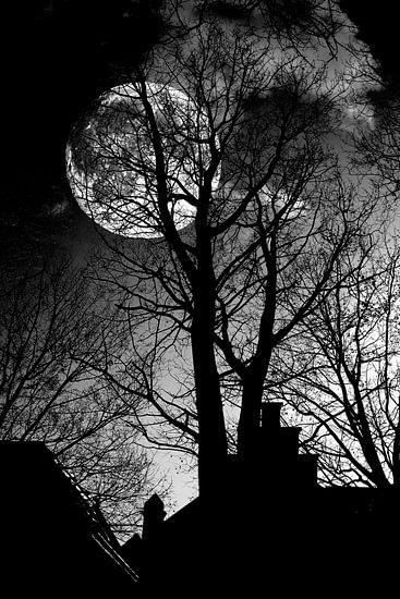 Zie de maan... van Jan vd Knaap